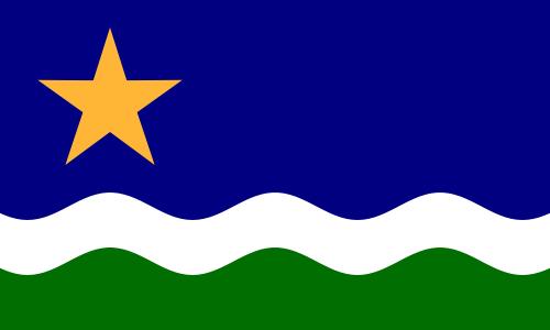 "1989 ""North Star"" Flag"